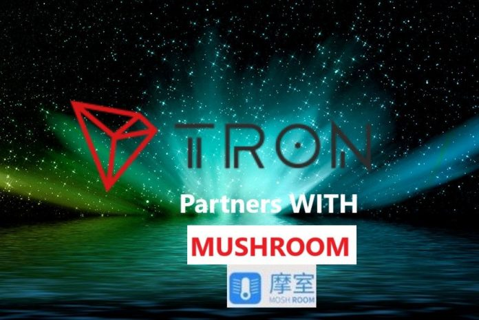 New Partnership With MOSHROOM